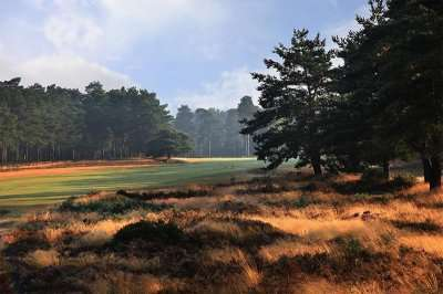 Golf Holidays in England