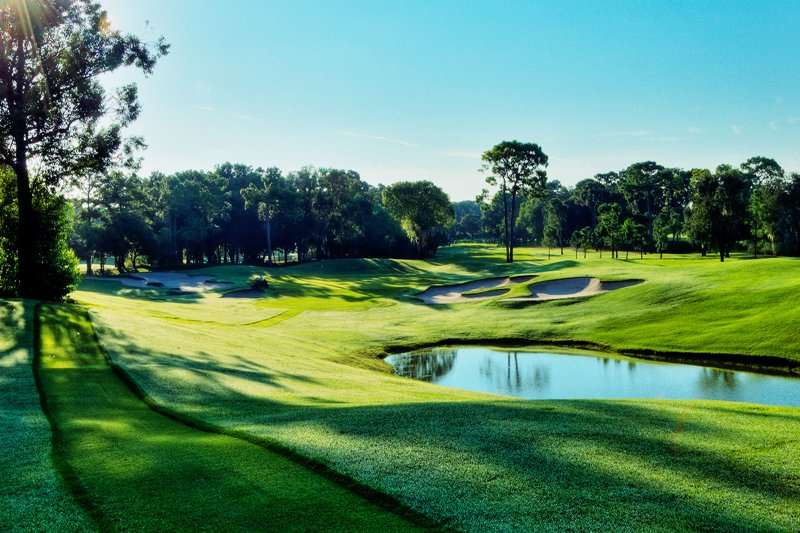 South Course at Innisbrook Golf Resort